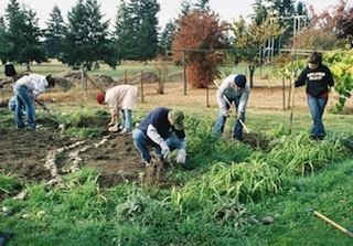 american community gardening association esl podcast blog blog archive more than food and flowers