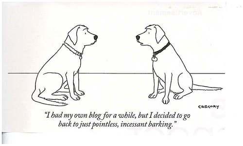 dog-blog1.jpg